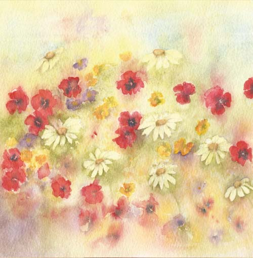 Flowers Collection by Jayne Gaze
