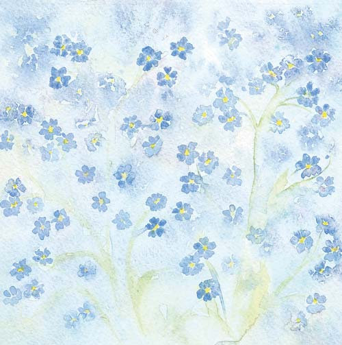 forget me not flower painting art