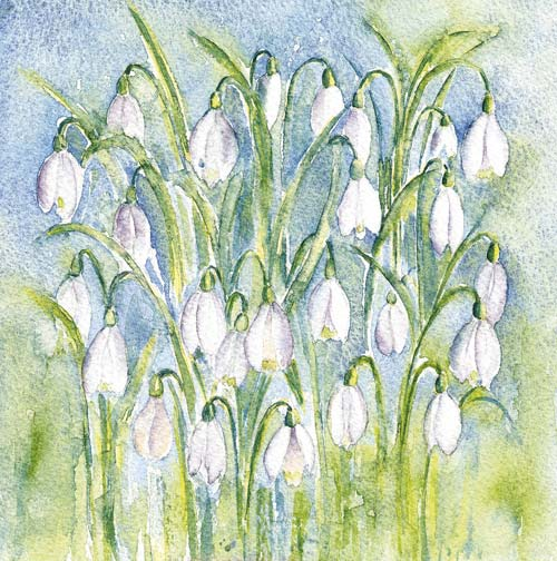 snowdrops hand painted art