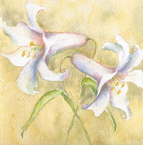trumpet lilies painting